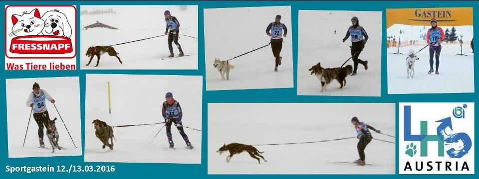 17. Internationales Schlittenhunderennen & Internationale ÖM-Schneecanicross 12.-13.03.2016 in Sportgastein